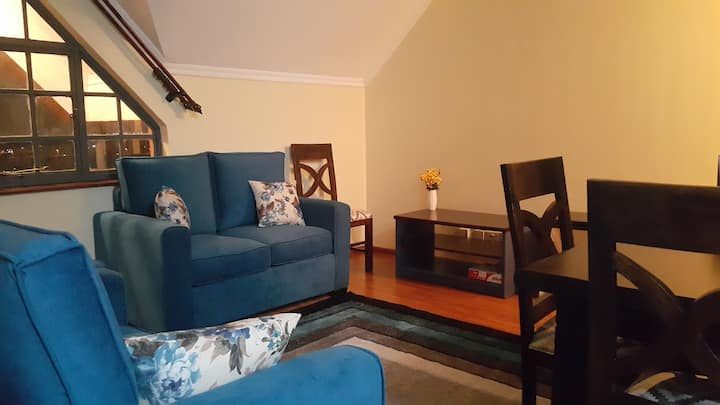 Tastefully Furnished 2 bedroom apartment near UN