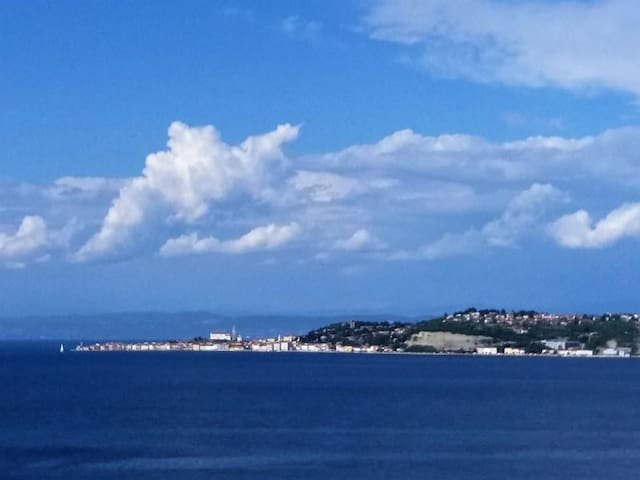 New accommodation with View on the Gulf of Piran - Savudrija Monterosso Crveni Vhr - Vacation home