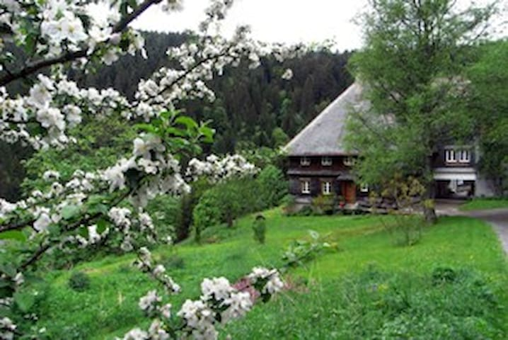 Baschnagelhof- abseits in der Natur - Sankt Blasien - House
