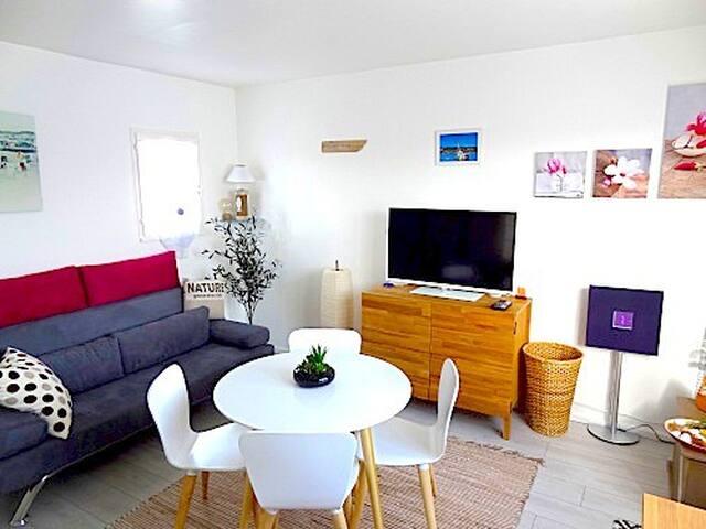 Cozy little home NOIRMOUTIER ISLAND - La Guérinière - Apartment