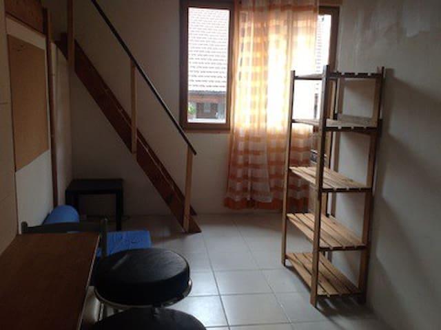 Studio indépendant dans grange - Viuz-en-Sallaz - Other