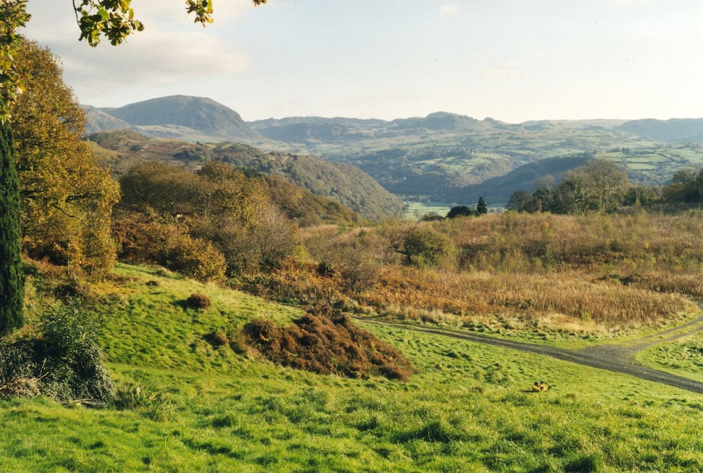 View of Manod and Migneint mountains from Hafod