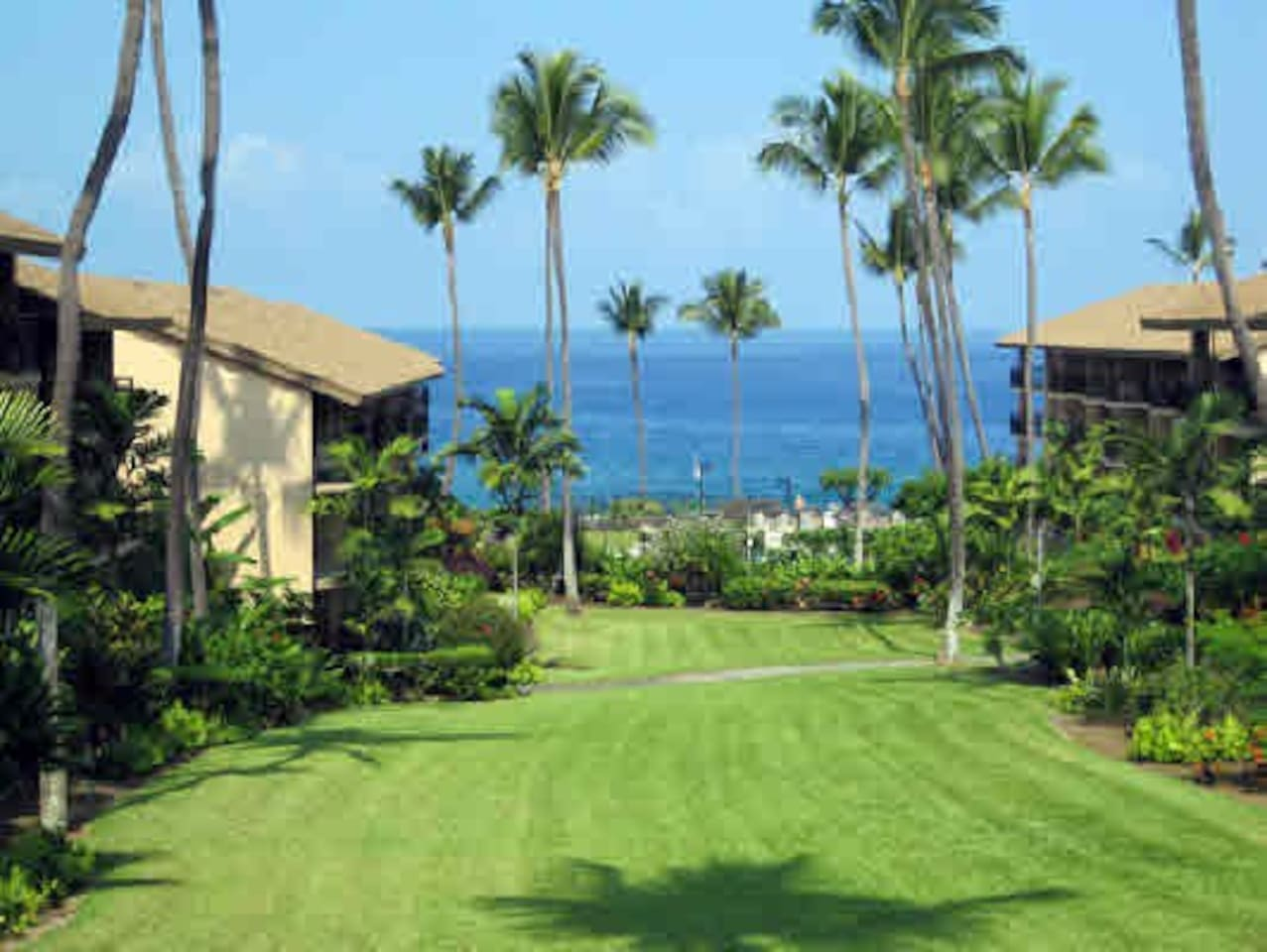 View from the Lanai down the beautiful green lawn to the Ocean