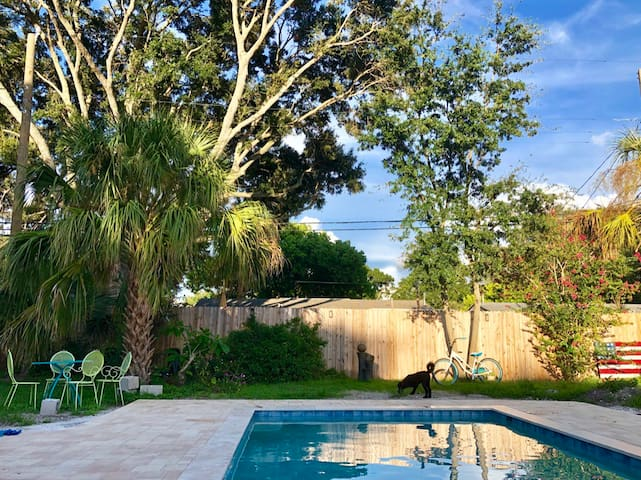 Dog-Friendly Suite w/Private Entrance & Pool!