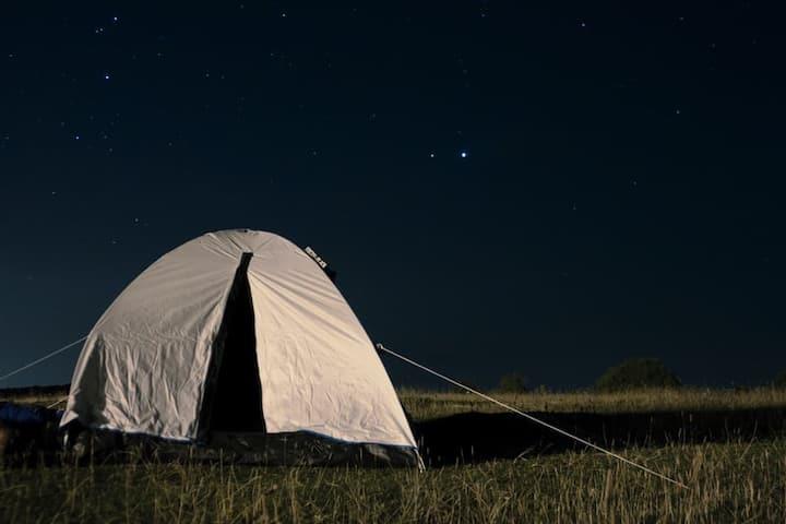 Tält i svensk mysig natur nära sjön