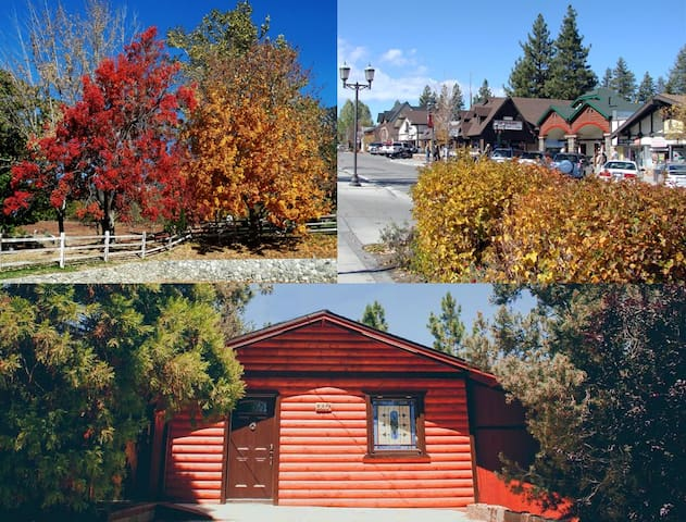 FALL IN BIG BEAR - Come and enjoy the Autumn foliage, crisp air, and forest scents.