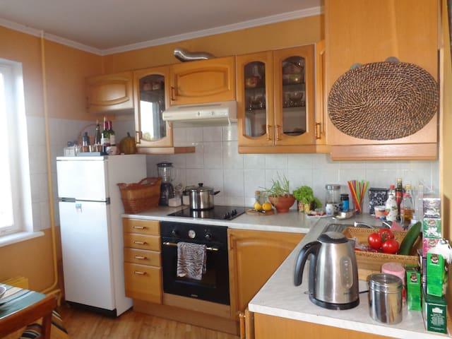 Room, breakfast and nice company :) - Ryga - Apartament
