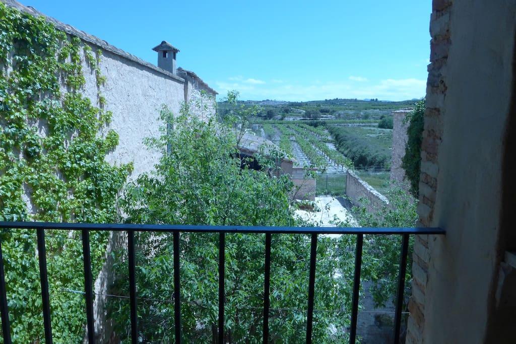 """Vista al exterior desde el """"balconet"""""""