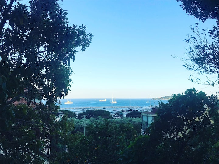 Studio terrasse vue mer 5mn à pied plage et centre