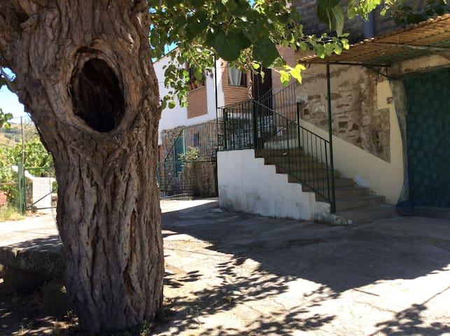 Casa a 5 minuti da Agropoli - Laureana Cilento - Casa