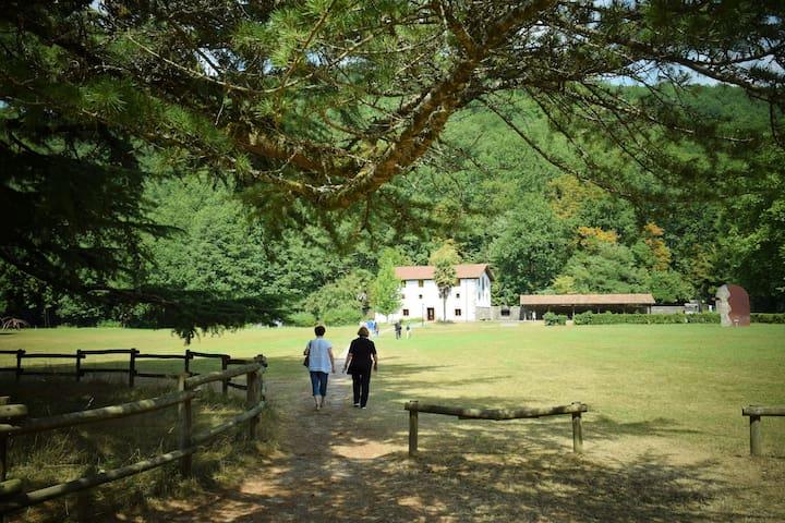 Paseo por el Parque Natural del Señorío de Bertiz
