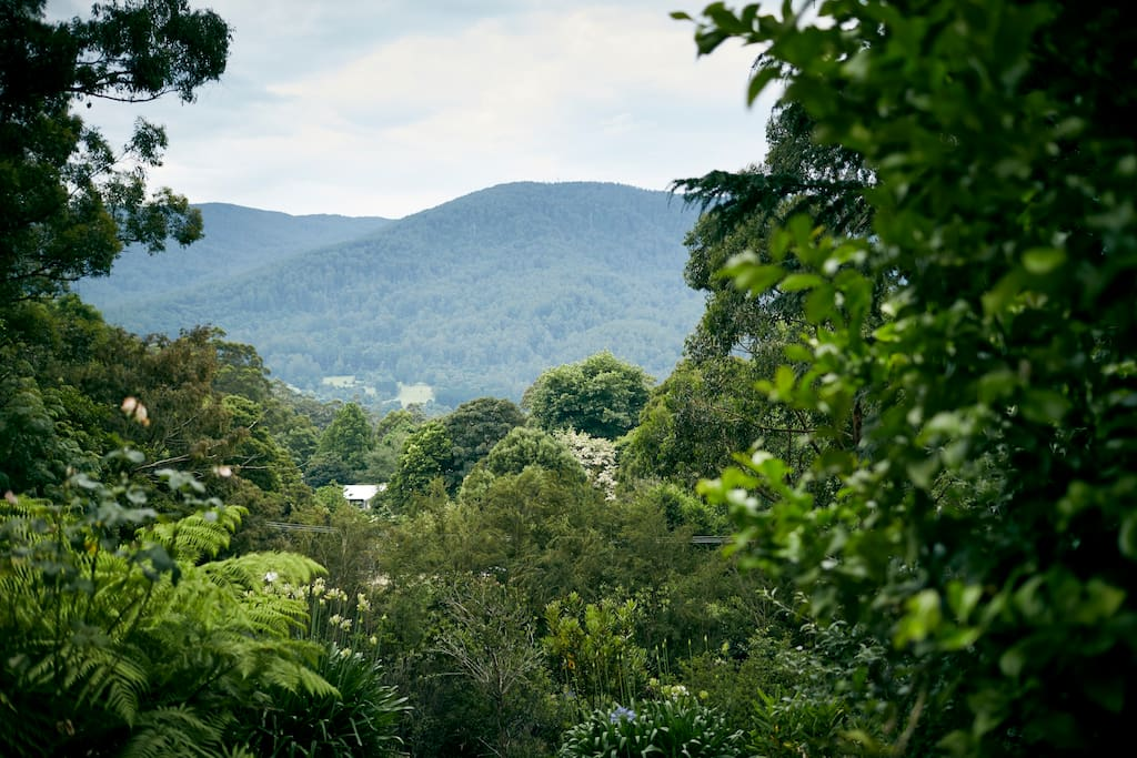 View of Mt Victoria from the back deck and most rooms of the house.