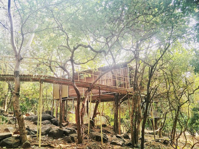 The Jungle Farm's Treehouse