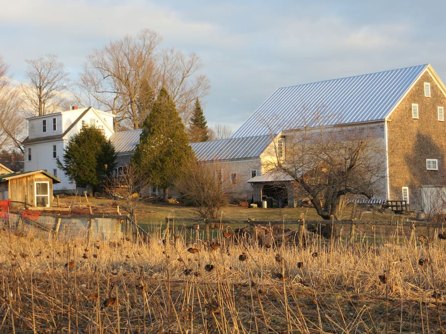 Farm as seen from the Northwest (where the wind blows from!)