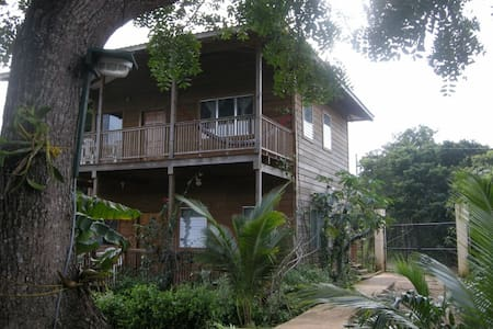 Apartments in Utila chez Milady