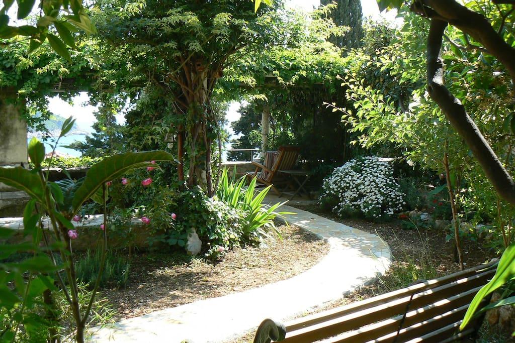 The garden with patio