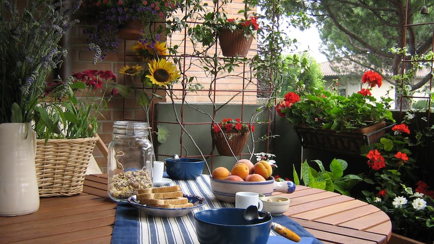 Camera con terrazza in B&B Anemone - Cervia - Bed & Breakfast