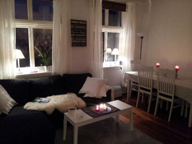 Coozy apartment  - Bergen - Daire