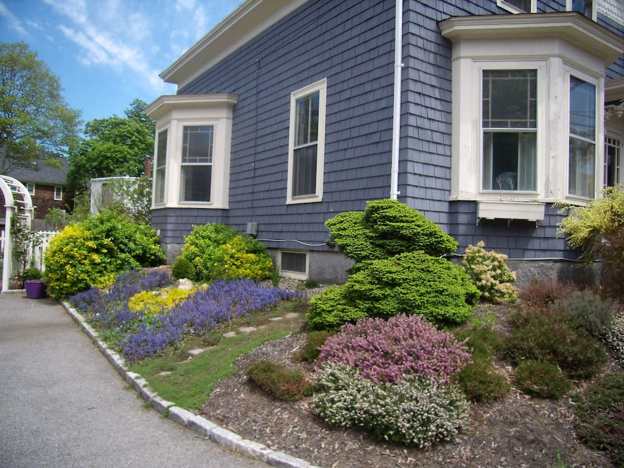 side garden in spring