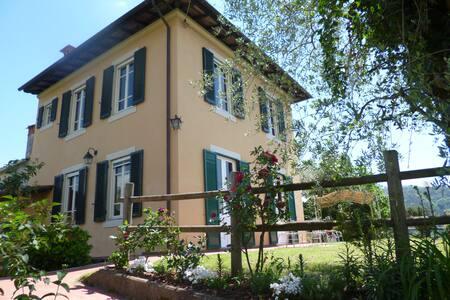Il podere di nonno Gino - Province of Lucca - Ev