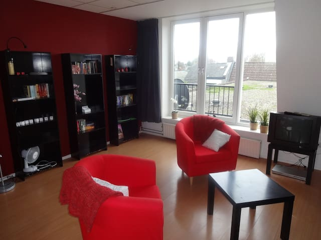 A spacious 1 bedroom apartment - Zevenbergen - Daire