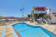 Our swimming pool with free sun beds and umbrellas for all our guests.