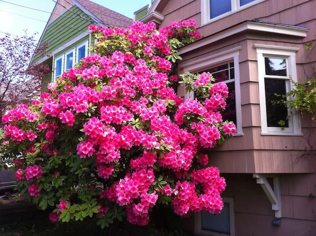 Seattle urban farm-like home - Seattle - House
