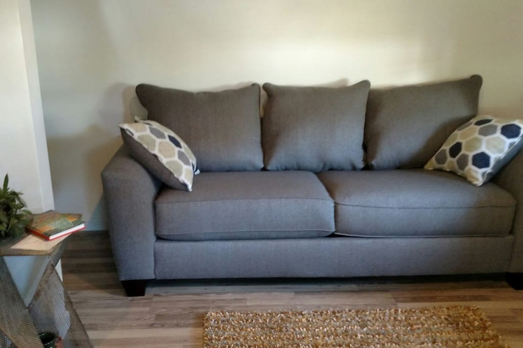 New comfy sleeper sofa to watch TV and relax.