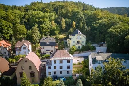 Villa Kamila - Karlovy Vary