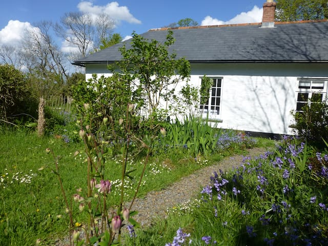 Peace and quiet in a Cornish garden - Cornwall - House