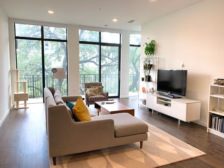 Beautiful 1B/1B Condo in the Museum District