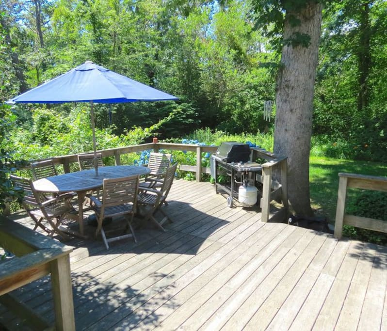 Deck with table, umbrella, and gas grill!