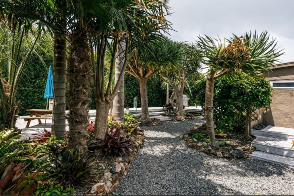 Entry to house, lush and tropical garden