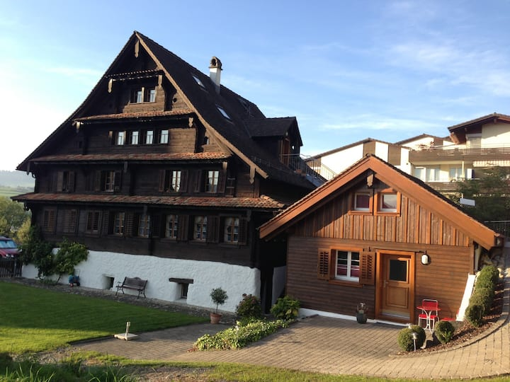 Typical swiss house with an optimal location