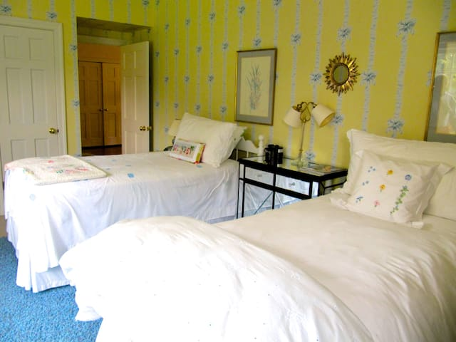 Private Bedroom w Twin Beds in Large Estate Home - Charlottesville - Casa