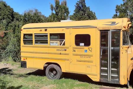 Bus de acampada 4