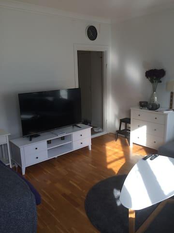 Apartment close to Central Gothenburg!