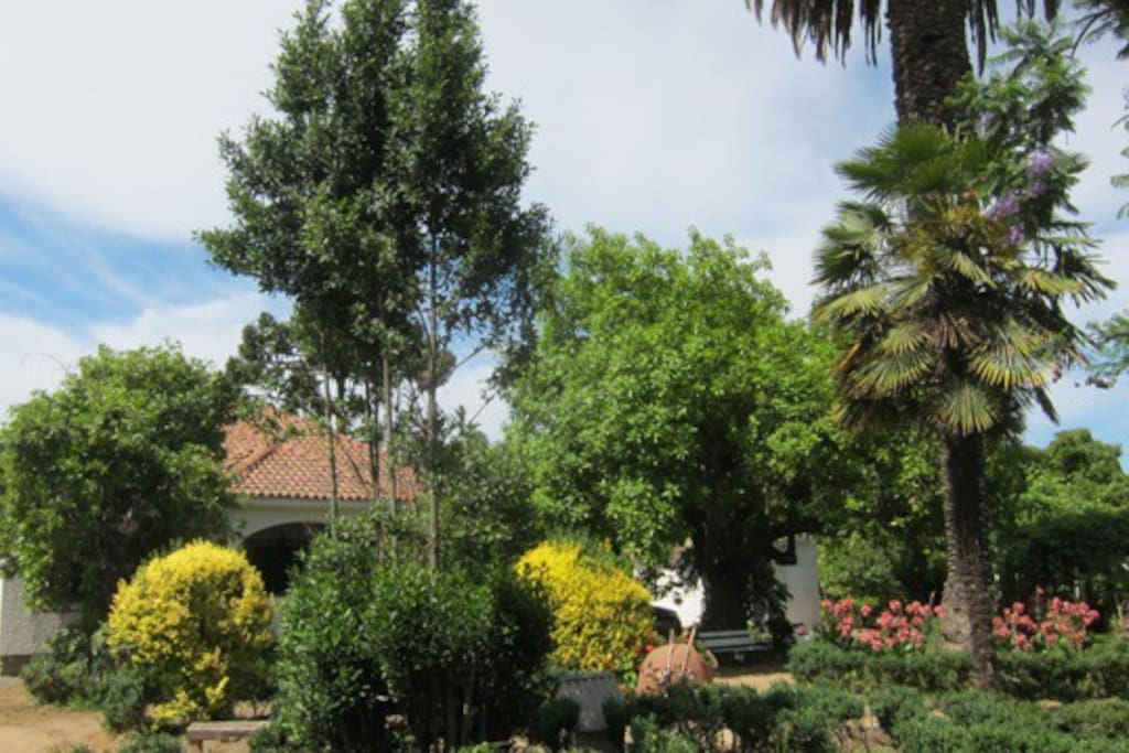Casona Los Naranjos - Olmué, Chile
