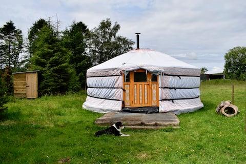 Peaceful Off-Grid Yurt in Ayrshire's Girvan Valley