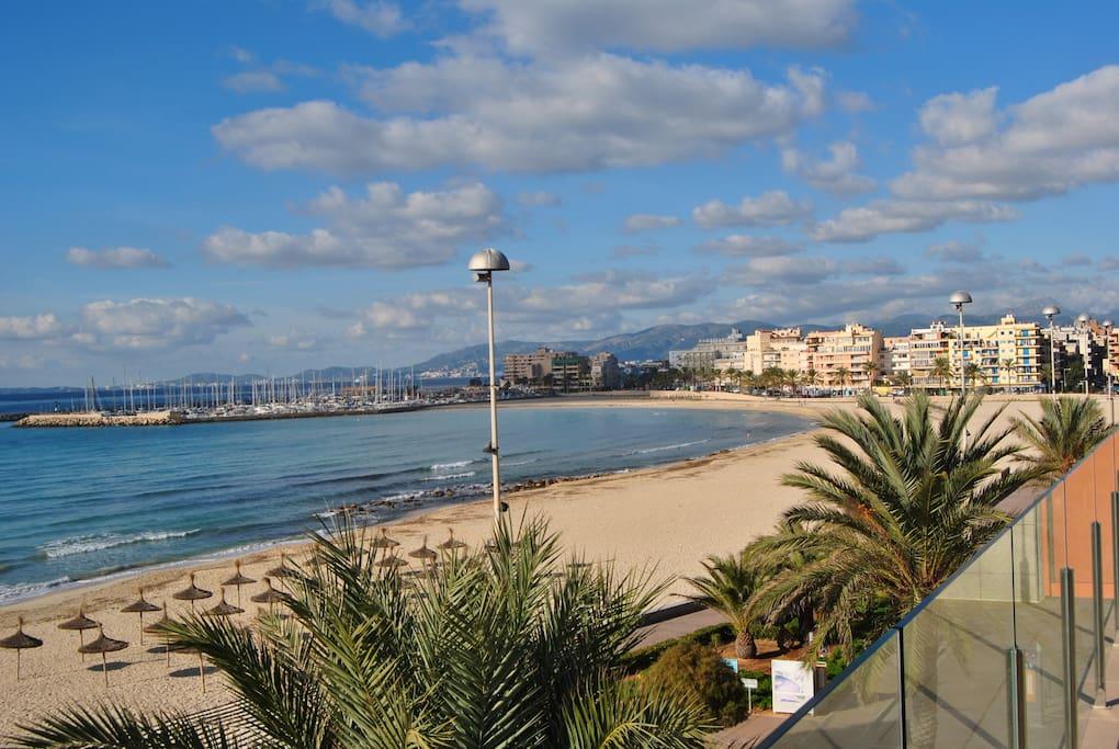 Room For Rent Playa De Palma