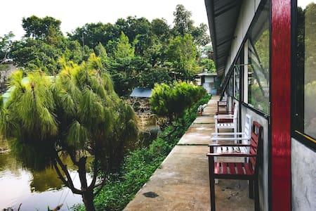 BIEN RUNG-YELLOW ROOM homestay Dak Glong-Dak Nong
