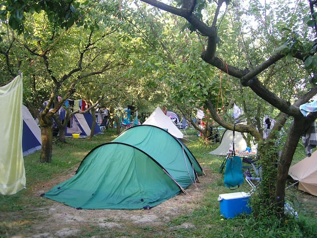 camping in a bio farm near Venice