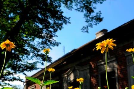House in the forest: Przyborowo11 - Fałkowo - Dom