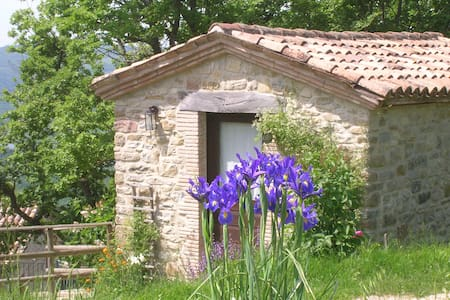 Agriturismo Gubbio Italy green room - Gubbio - Bed & Breakfast
