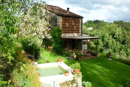 'Il Gallo' in the hills of Lucca - Monsagrati - Penzion (B&B)