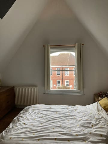 Charming loft conversion in Greater London area