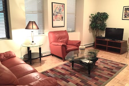 Downtown Apartment-Close to Train