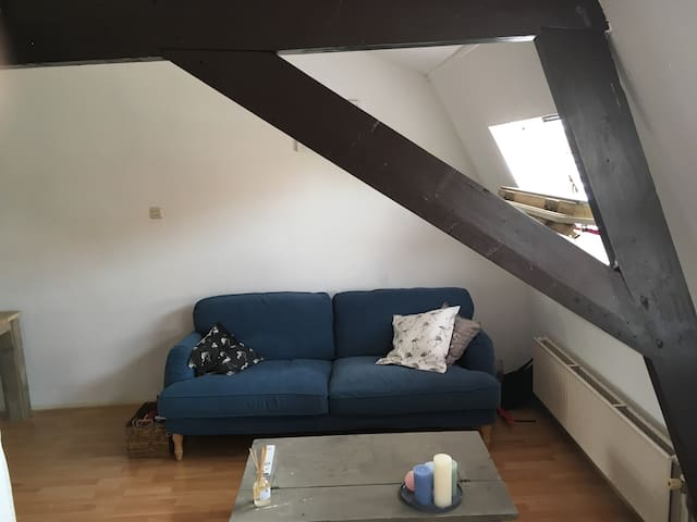 Cosy Apartment in City Centre Haarlem