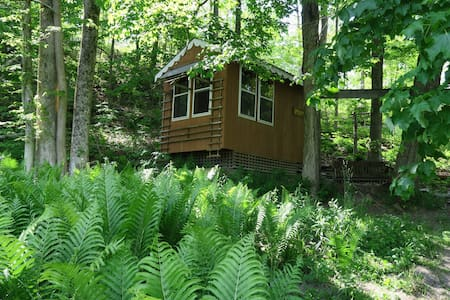 Fiddlehead South Cabin