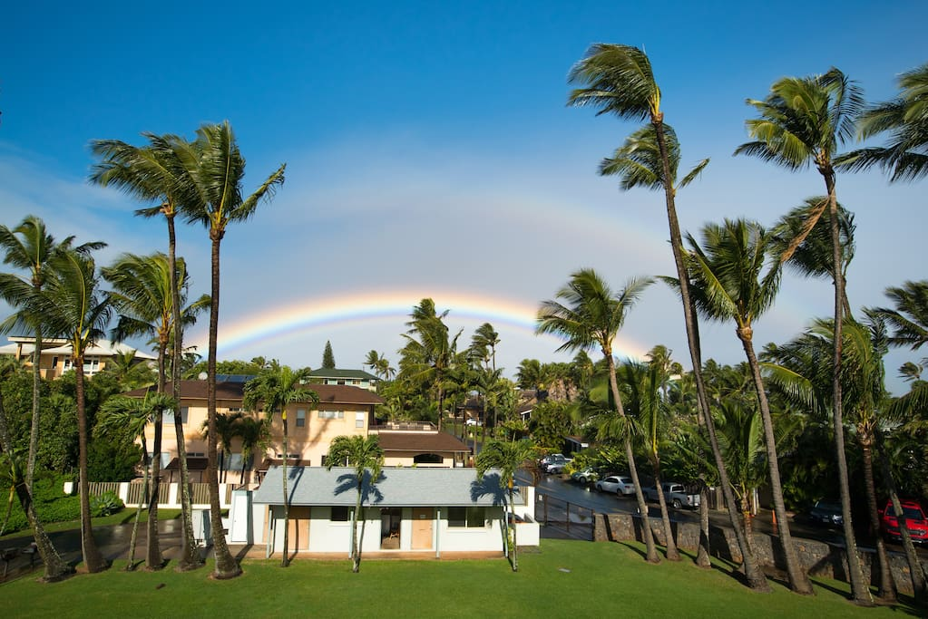 backyard rainbow view
